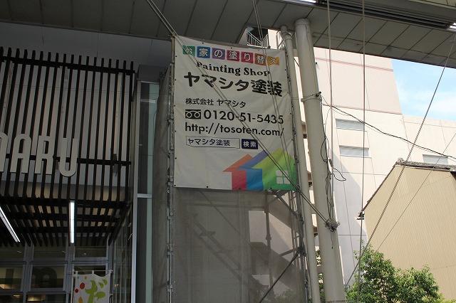 IMG_9987