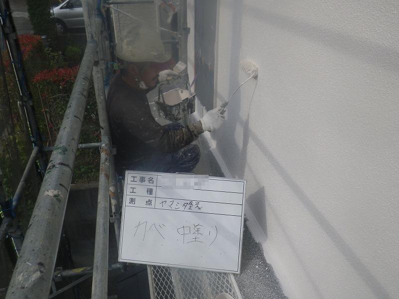 IMGP0141B